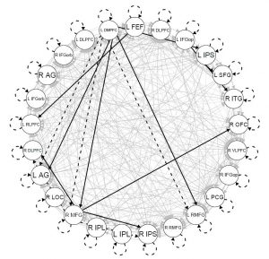 A map showing connections among 25 brain regions of interest for a single participant during resting state. The connections are lagged (dashed lines), contemporaneous (solid lines), constant across development (black lines), or specific to key periods in development (gray lines).