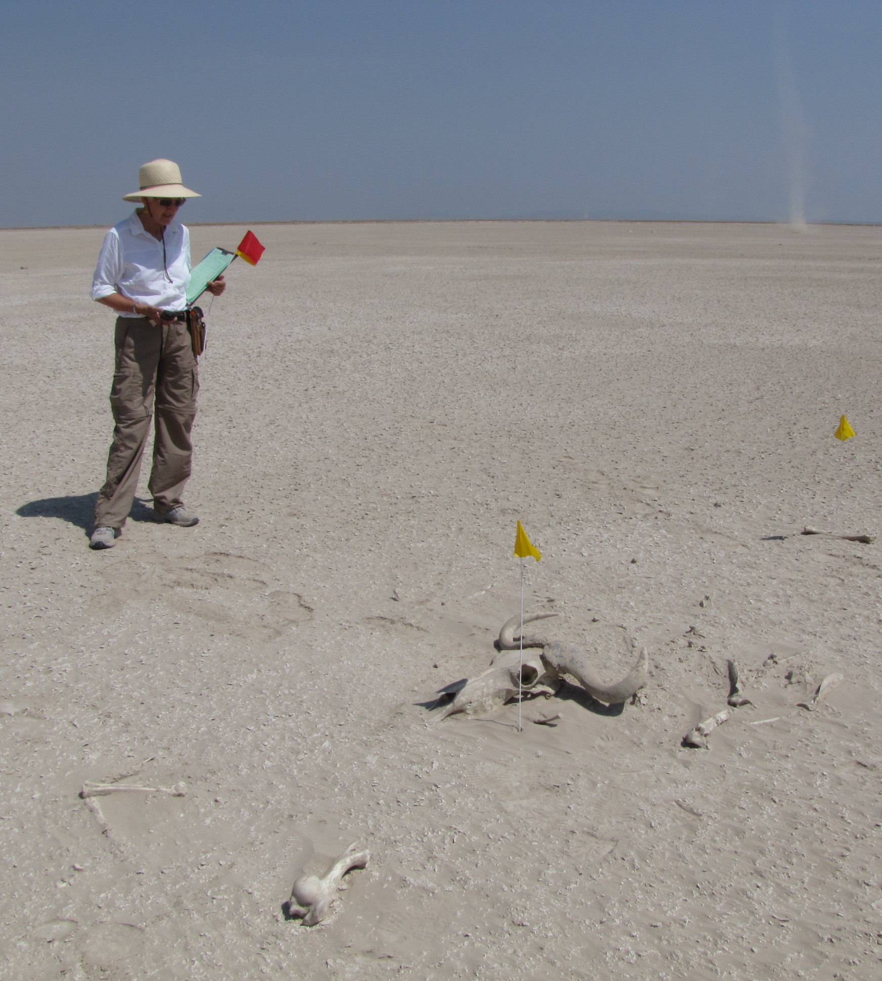 Kay on lakebed.WB skeleton_cropped