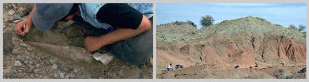 Excavation_collage