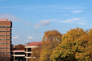 The view of Fall foliage from our lab on the fourth floor of Lorch Hall.