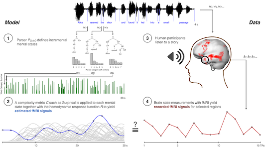 Figure 1: Modeling approach: derive expected neural signals for sentence comprehension from alternative conceptions of language structure. (1) Alternative language models describe the cog- nitive states of an individual listening to a story word-by-word. (2) These states are summarized via a complexity metric, and matched with neural signals via a neural response function. The hemodynamic response function used in fMRI research is illustrated here. Potentially confound- ing covariates may be statistically removed. (3-4) Predicted neural time-courses from step 2 are tested against neural signals recorded from individuals who passively listened to a story.