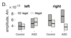 Evoked brain responses to phontactically legal and illegal pseudo-words. Signals were recorded by MEG and localized to elft and right auditory cortex. Average activity from 750-850 ms after word onset is shown separately for participants iwth ASD and for controls. Key result: greater right hemisphere response to legal sequences in ASD, but not for controls.