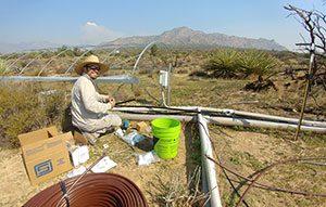 Pete Homyak establishing plots at a new precipitation manipulation experimental site.