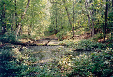 university of michigan dissertation abstracts