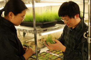 fpplantroomimage