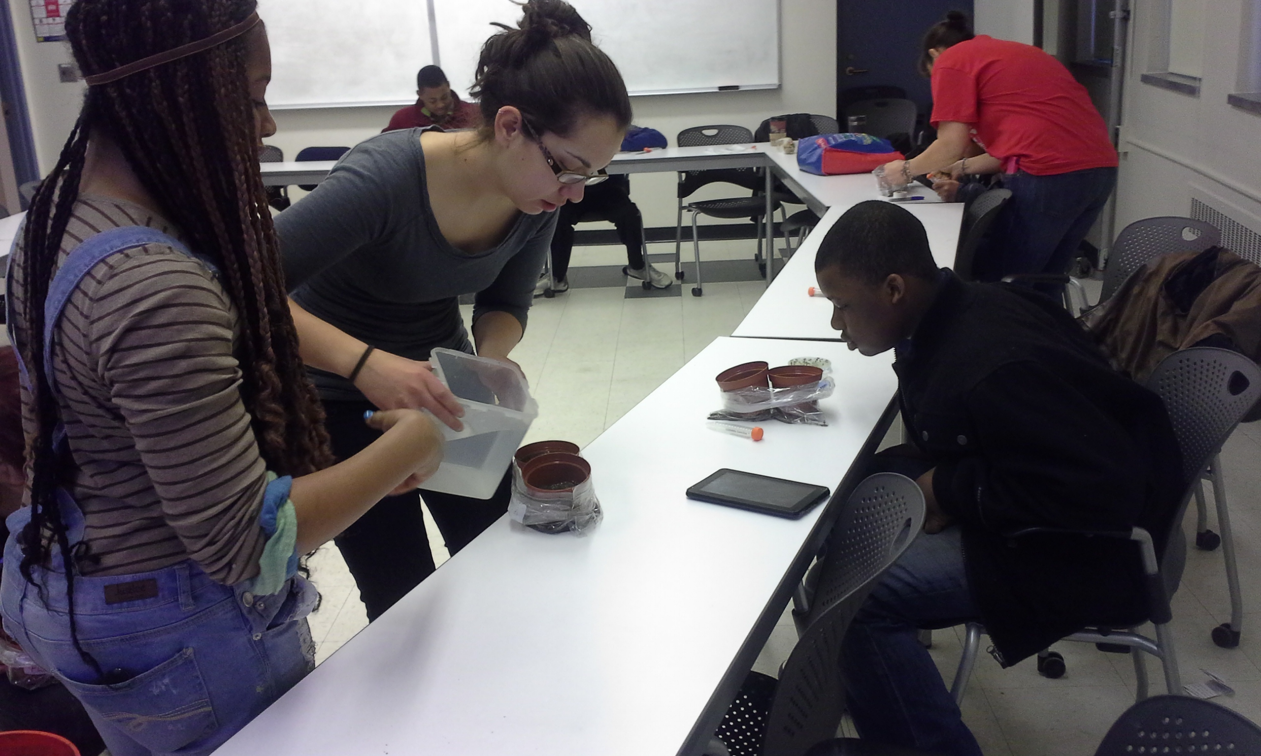 Amanda helps students design their own take-nom experiments on milkweeds and monarchs