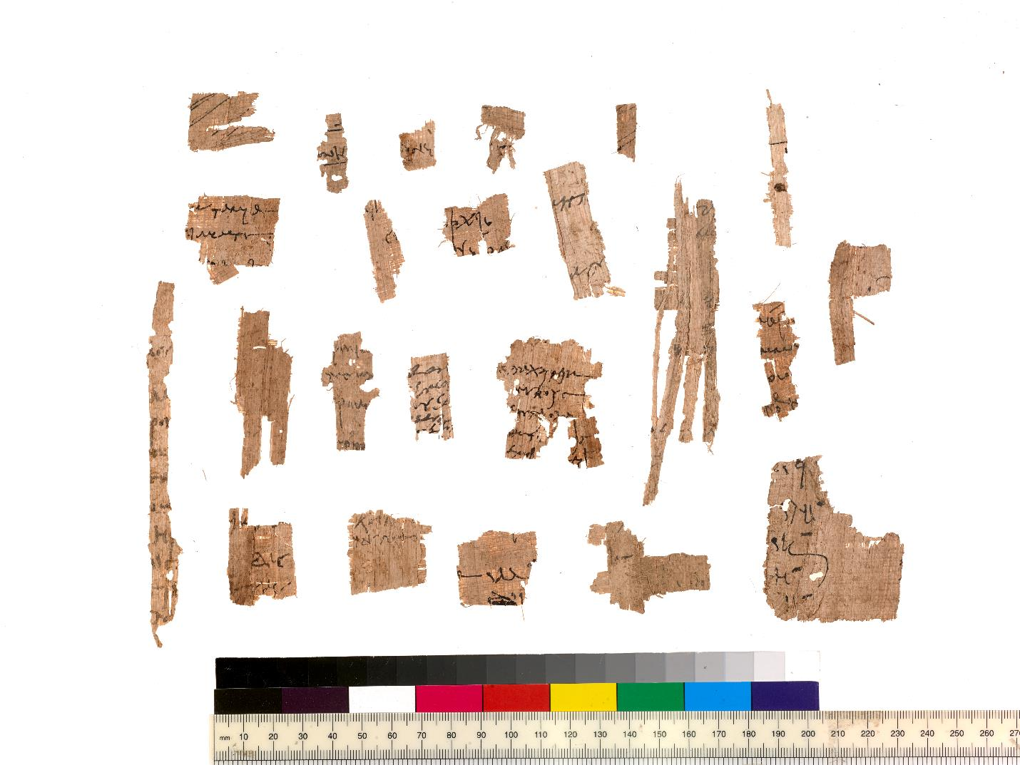 A few of the many small papyrus fragments found near 5451f. P.Mich.inv. 5451c3v, photo by Randal Stegmeyer.