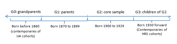 Approximate Cohort and Generational Structure