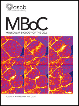 MBoC_26-13-Cover.indd