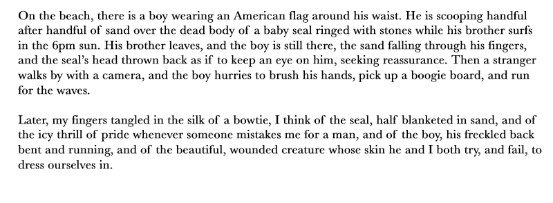 On the beach, there is a boy wearing an American flag around his waist. He is scooping handful after handful of sand over the dead body of a baby seal ringed with stones while his brother surfs in the 6pm sun. His brother leaves, and the boy is still there, the sand falling through his fingers, and the seal's head thrown back as if to keep an eye on him, seeking reassurance. Then a stranger walks by with a camera, and the boy hurries to brush his hands, pick up a boogie board, and run for the waves.  Later, my fingers tangled in the silk of a bowtie, I think of the seal, half blanketed in sand, and of the icy thrill of pride whenever someone mistakes me for a man, and of the boy, his freckled back bent and running, and of the beautiful, wounded creature whose skin he and I both try, and fail, to dress ourselves in.