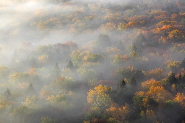 Drifting amidst Fall—Big Carp River Valley (Porcupine Mountains State Park— Upper Michigan); photograph by Aaron C. Jors.