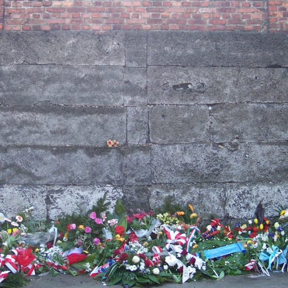 Flowers piled in front of a concrete wall.
