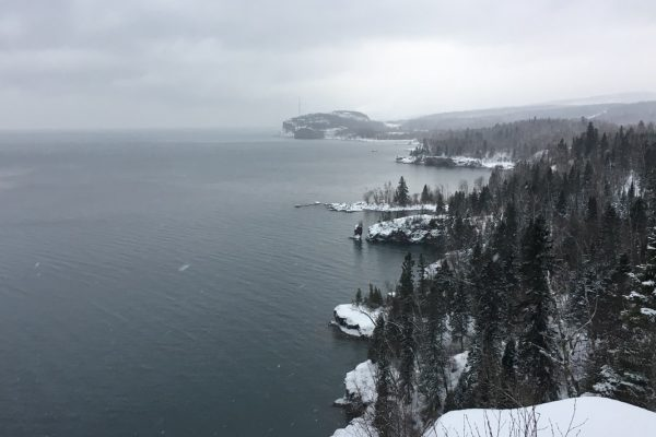 View of a snowy coastline covered in pine trees