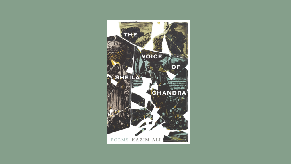The Voice of Sheila Chandra by Kazim Ali Book Cover