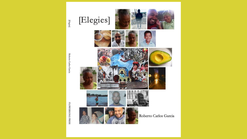[Elegies] by Roberto Carlos Garcia Book Cover