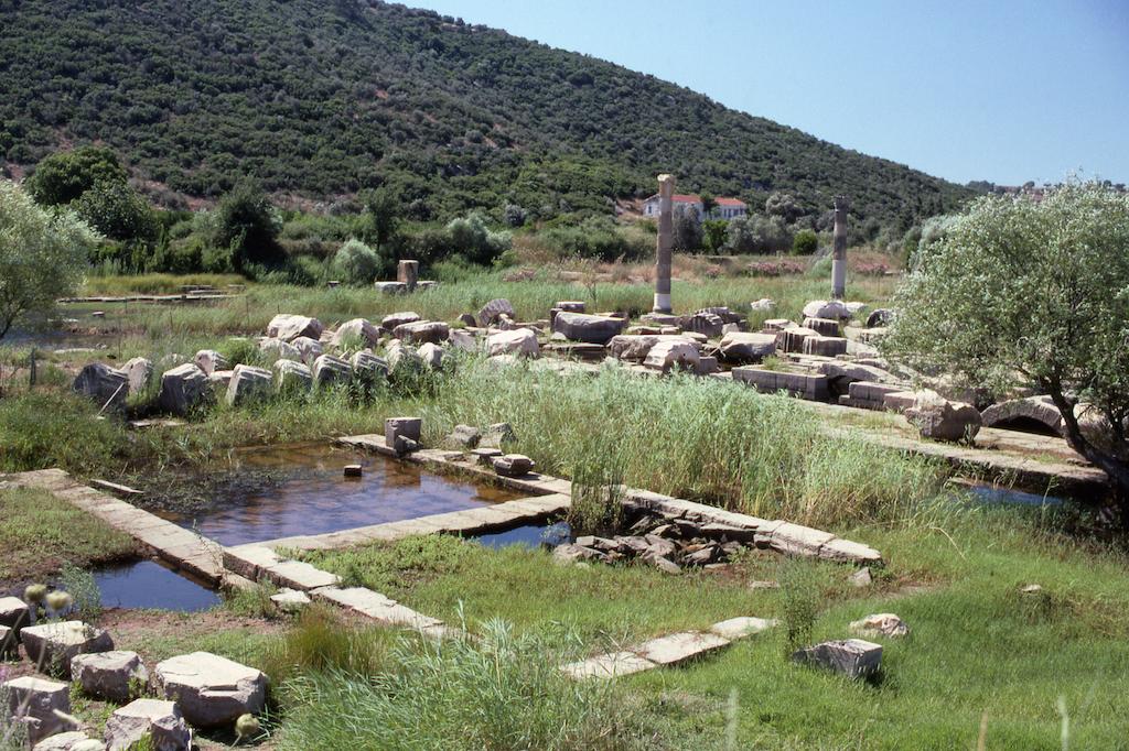 Klaros'daki Apollon Tapınağının Kalıntıları