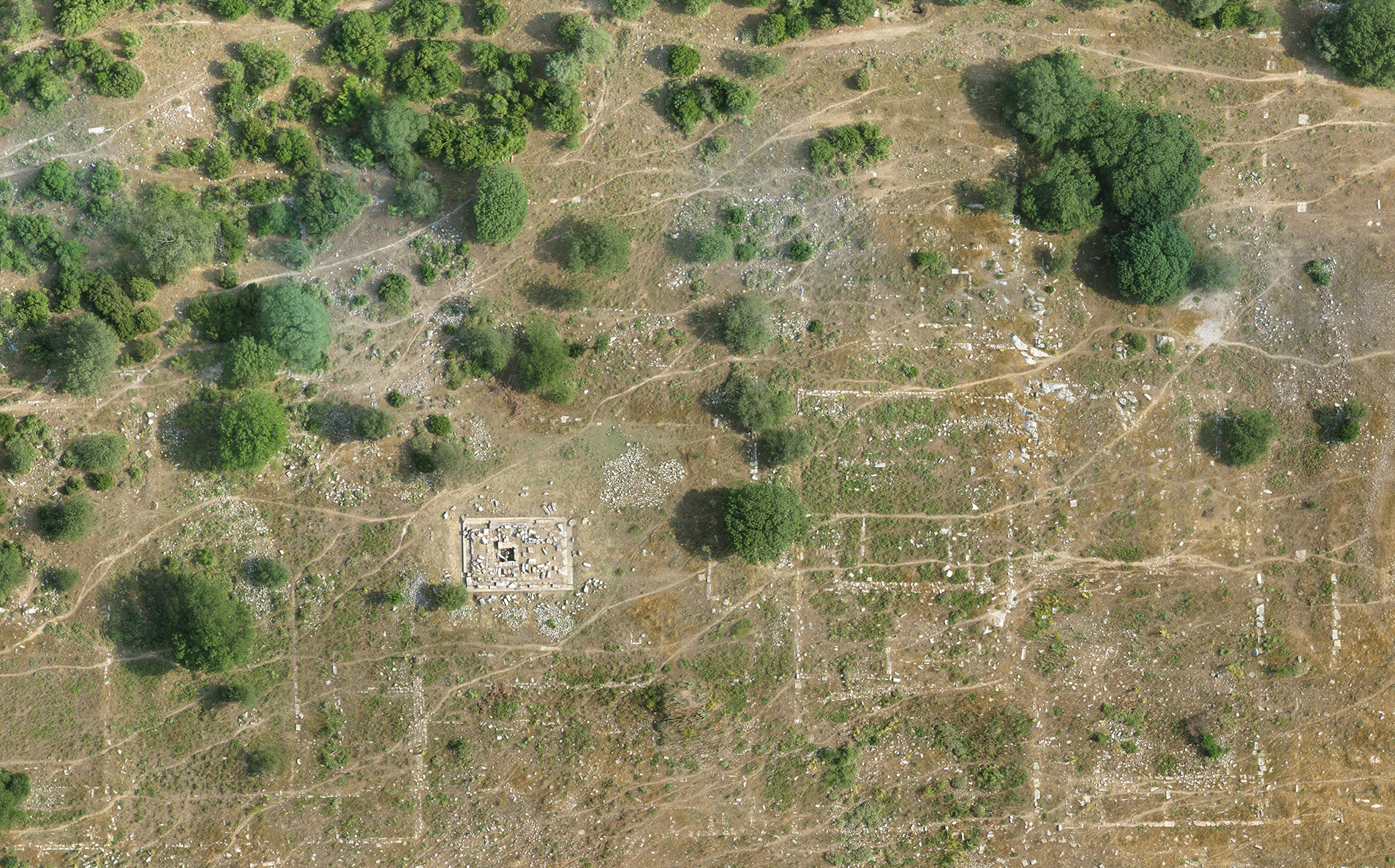 Selection from an orthorectified aerial photograph, showing the remarkable surface legibility of the site