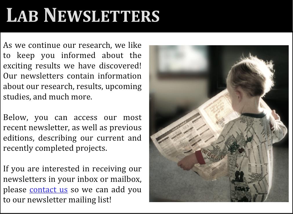 Newsletter 2