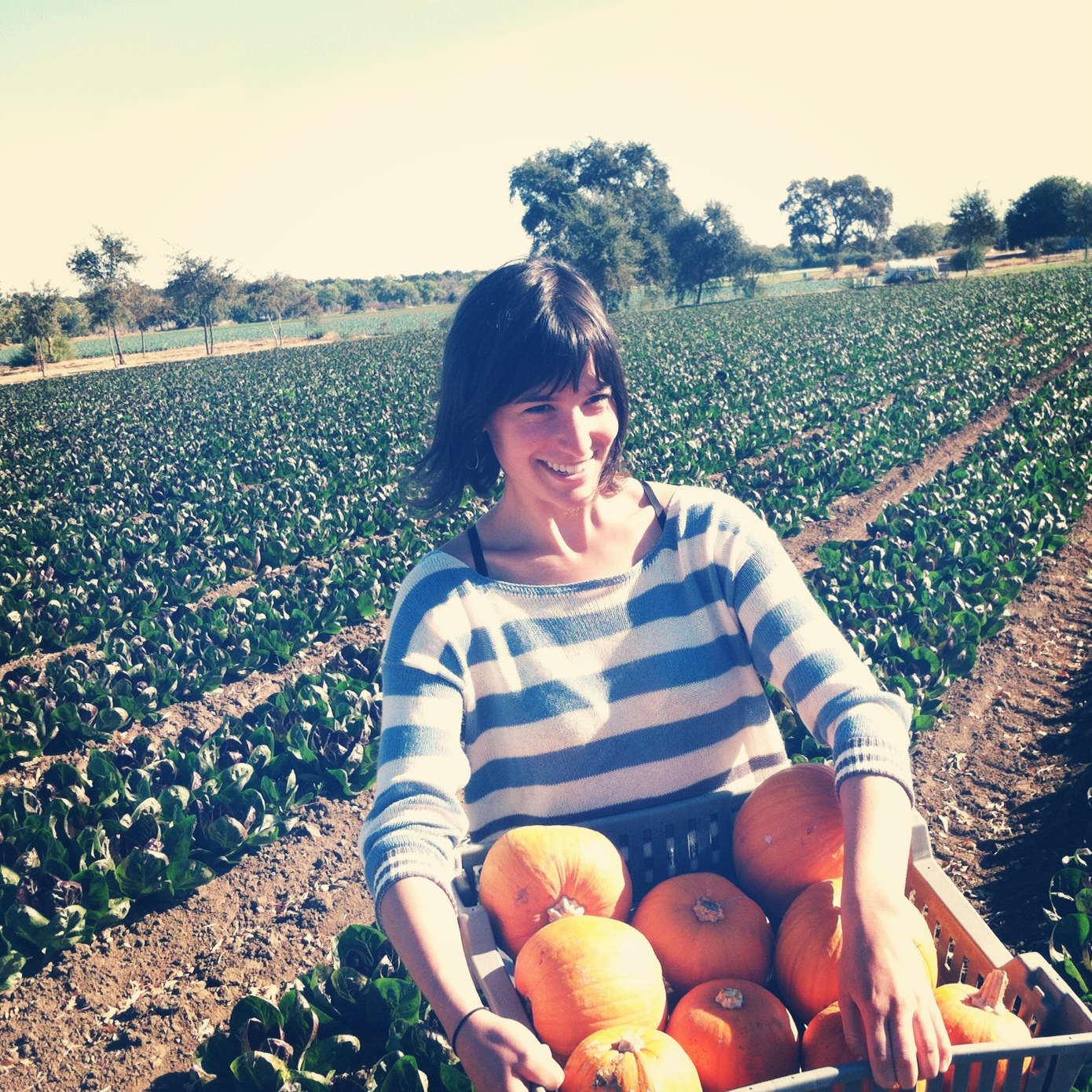 Lilly Fink Shapiro : Program Manager, Sustainable Food Systems Initiative