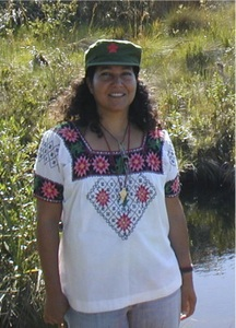 Ivette Perfecto : Professor of Ecology, Natural Resources and Environment