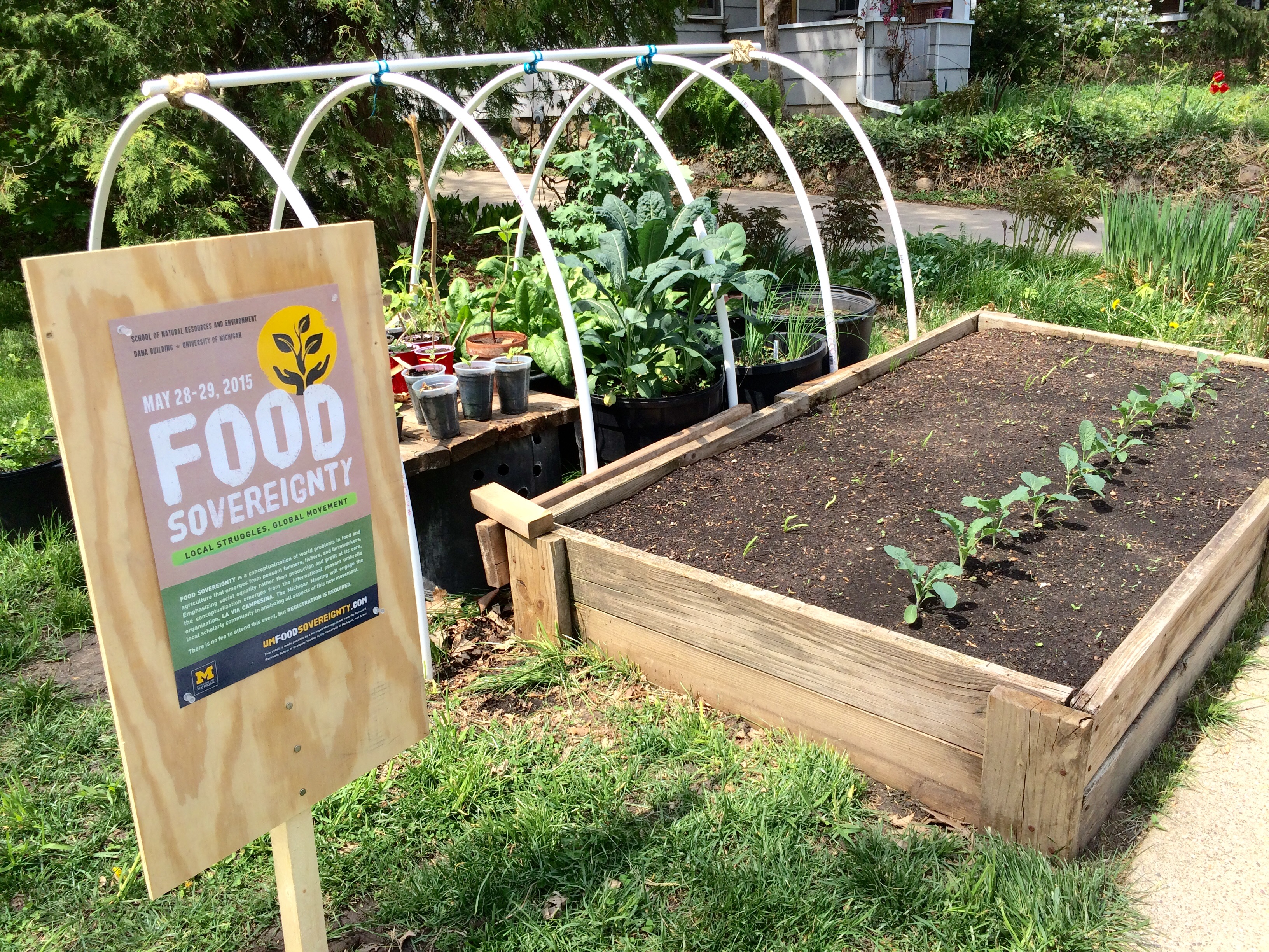 foodsov_garden