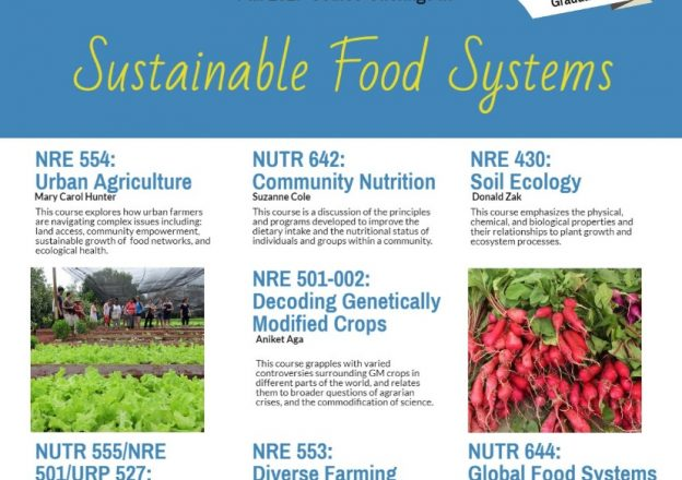 Sustainable Food Systems Initiative | A Multidisciplinary ...
