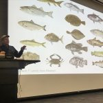 "Paul Greenberg | ""Four Fish: The Future of the Last Wild Food"""